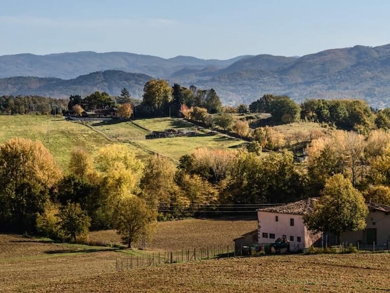 Mugello Landscape