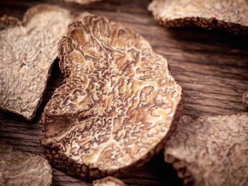 White truffle la Morra