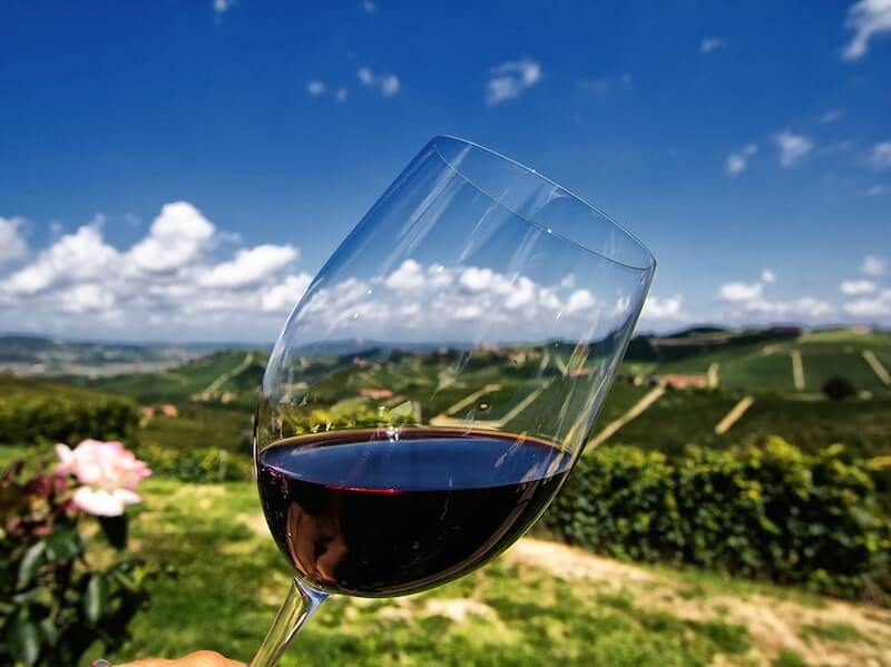 barbaresco glass wine