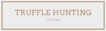 truffle hunting tour travel italy