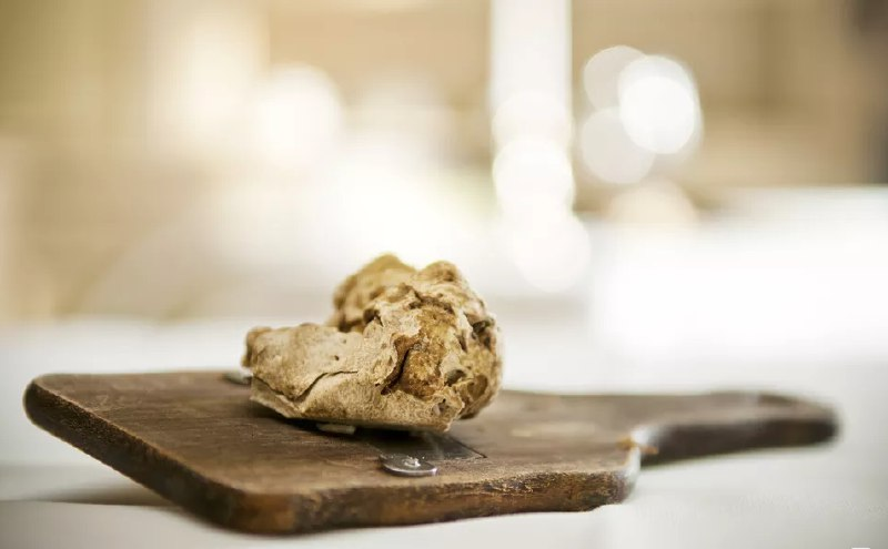 alba white truffle and taste