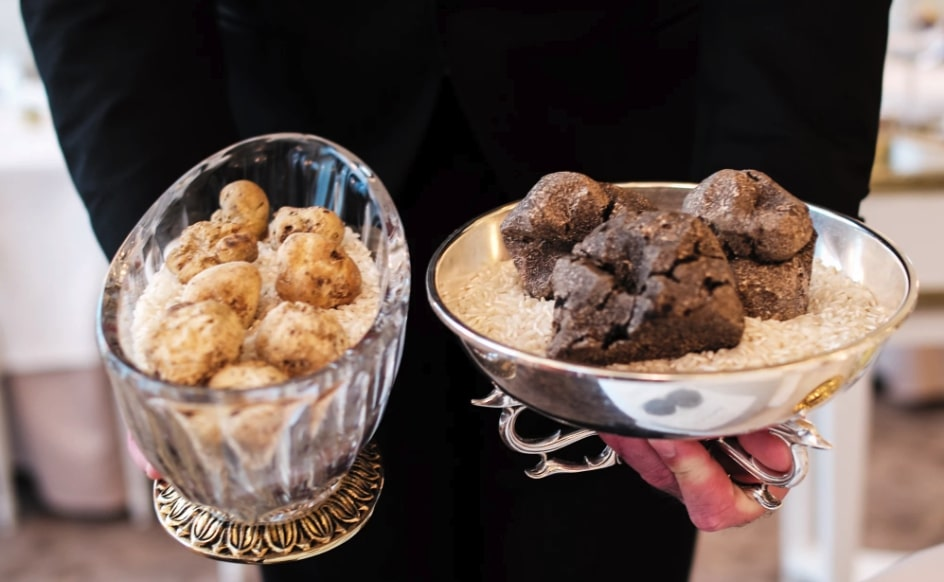 What are the differences in taste between black and white truffles?